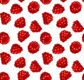 Seamless pattern fresh juicy raspberries Royalty Free Stock Image