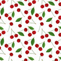 Seamless pattern of fresh, ripe, succulent cherries with leaves in color. Royalty Free Stock Photo