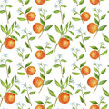 Seamless pattern with fruit tree branches, flowers, leaves and oranges