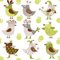Seamless pattern with funny  birds Royalty Free Stock Photography