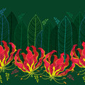 Seamless pattern with Gloriosa superba or flame lily, tropical flower and leaf on the dark green background. Royalty Free Stock Photo