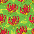 Seamless pattern with Gloriosa superba or flame lily, tropical flower and ornate leaf on the green background. Royalty Free Stock Photo