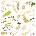 Seamless pattern with gluten free cereal foodstuff