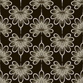 Seamless pattern graphic ornament. Floral stylish background. Re Royalty Free Stock Photo