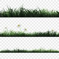 Seamless pattern of grass