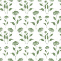 Seamless pattern with green Echinacea plant silhouette Royalty Free Stock Photo