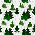 Seamless pattern green fir trees on snow