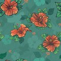 Seamless pattern with green hibiscus flowers Royalty Free Stock Photo