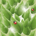 Seamless pattern - Green leaves and ladybug Royalty Free Stock Images
