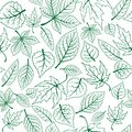 Seamless pattern of green leaves for seasonal or background design Royalty Free Stock Images