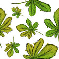 Seamless Pattern Of Green Palmate Leaves Watercolor