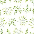 Seamless pattern with green watercolor branches and leaves. Hand drawn illustration isolated on white