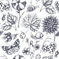 Seamless pattern with hand drawn leaves, flowers, insects, snails and seeds sketches. Vector autumn background. Vintage illustrati Royalty Free Stock Photo