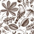 Seamless pattern with hand drawn leaves and seeds sketch. Vector autumn background. Vintage bird illustration. Royalty Free Stock Photo