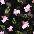 Seamless pattern of hand drawn soft pink jungle flower alstroemeria on a black background. Decorative exotic tropical
