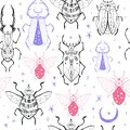 Seamless pattern with hand drawn space magic beetles. Sacred Moon symbol, abstract