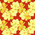 Seamless pattern with hibiscus on a dark red background. vector