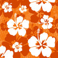 Seamless pattern with Hibiscus flower Royalty Free Stock Photo
