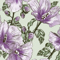 Seamless pattern with Hibiscus flowers Royalty Free Stock Images