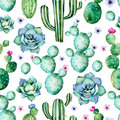 Seamless pattern with high quality hand painted watercolor cactus plants,succulents and purple flowers.