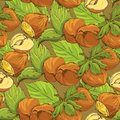 Seamless pattern with highly detailed handdrawn hazelnuts on brown background Royalty Free Stock Images