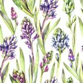 Seamless pattern Hyacinths flowers and leaves. Spring watercolor illustration in violet shades. Botanical texture. Fresh