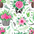 Seamless pattern Illustration of hand painted watercolor Decorative flower rose in a pot Blooms plant for the interior Royalty Free Stock Photo