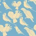 Seamless pattern Jaco, Lovebird, wavy parrot kakadu. Vector illu