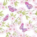 Seamless pattern with Japanese blossom sakura and butterflies. V Royalty Free Stock Photo