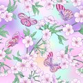 Seamless pattern with Japanese blossom sakura and butterflies. Royalty Free Stock Photo