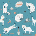 Seamless pattern with kind funky white cats, fun, stylish. Vector illustration with cat accessories - food, toys, broken flower. K Royalty Free Stock Photo