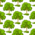 Seamless pattern of leafy green trees background in square format for background design Stock Image
