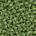 Seamless pattern with leaves of different shapes