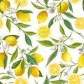 Seamless Pattern. Lemon Fruits Background. Floral Pattern Royalty Free Stock Photo
