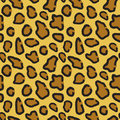 Seamless pattern of leopard skin Royalty Free Stock Photo