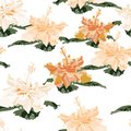 Seamless pattern, light vintage colors hibiscus flowers on white background Royalty Free Stock Photo