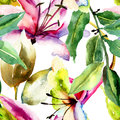 Seamless pattern with lily flowers watercolor illustration Stock Photos