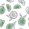 Seamless pattern with lime and green leaves, slice citrus white background. Tropical fruits. Raw and vegetarian food.