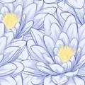 Seamless pattern with lotus flowers beautiful hand drawn contour lines and strokes perfect for background greeting cards and Stock Photo
