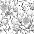 Seamless pattern with lotus flowers beautiful monochrome black and white hand drawn contour lines and strokes perfect for Stock Photo