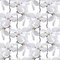 Seamless pattern - magnolia flowers
