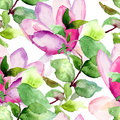 Seamless pattern with magnolia watercolor illustration Royalty Free Stock Images