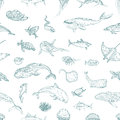 The seamless pattern of marine animals. Royalty Free Stock Photo