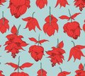 Seamless pattern, Medinilla magnifica flowers on light blue background, red and green tones