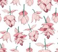 Seamless pattern, Medinilla magnifica flowers on white background, pink, red and white tones