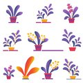 Seamless Pattern of Money Homeplants Grow in Pots