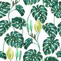 Seamless pattern with monstera leaves. Decorative image of tropical foliage and flower. Background made without clipping Royalty Free Stock Photo