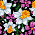 Seamless pattern with narcissus and iris Stock Photography