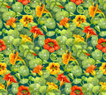 Seamless pattern with nasturtium flowers and leaves painted with watercolor