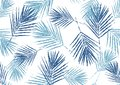 Seamless pattern natural blue palm leaves stamp on white background, foliage vector, illustration